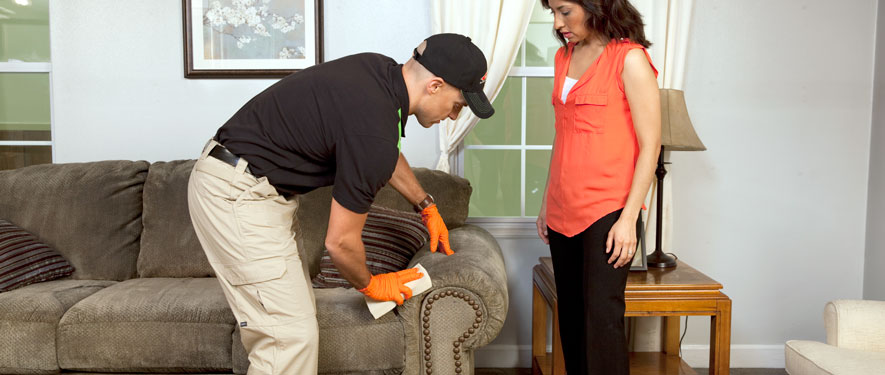 Woodcrest, CA carpet upholstery cleaning